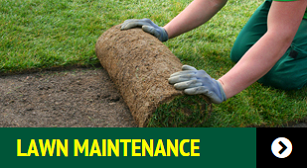 Lawn Care Services U0026 Landscaping Maintenance Packages Chesapeake, VA