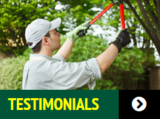 testimonials of lawn care services for Newell Lawn and Landscape
